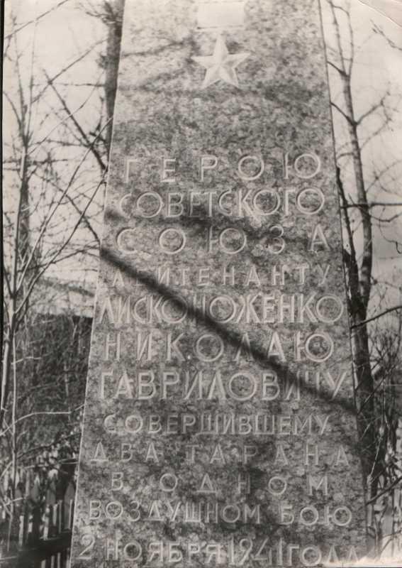 295-175.jpg